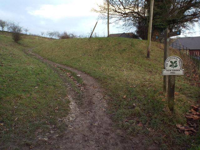 New Timber Hill, Saddlescombe
