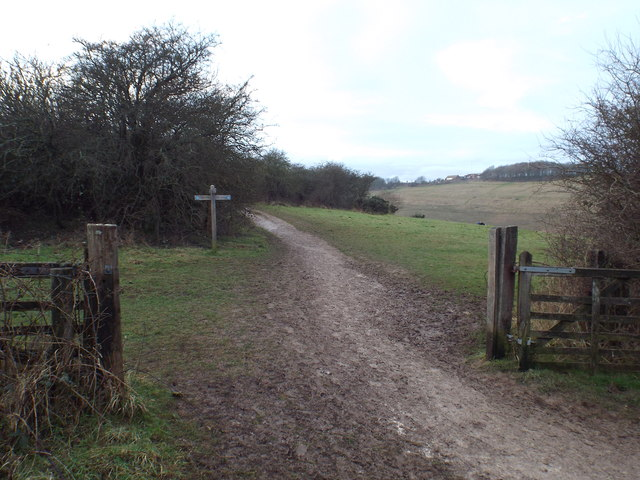 South Downs Way near Devil's Dyke