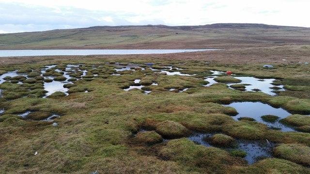 Loch of Heogland