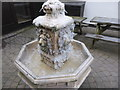 SP4631 : Frosted Fountain by Bob Harvey