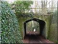 TL0110 : Nettleden - Roman Road by Colin Smith
