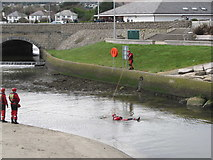 J3731 : Water rescue exercise in the Shimna Estuary by Eric Jones
