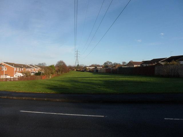Greenspace, Chapel Park Estate