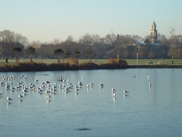 Frozen lake in Burgess Park