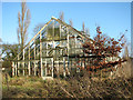 TG2809 : 1950s greenhouse by Evelyn Simak