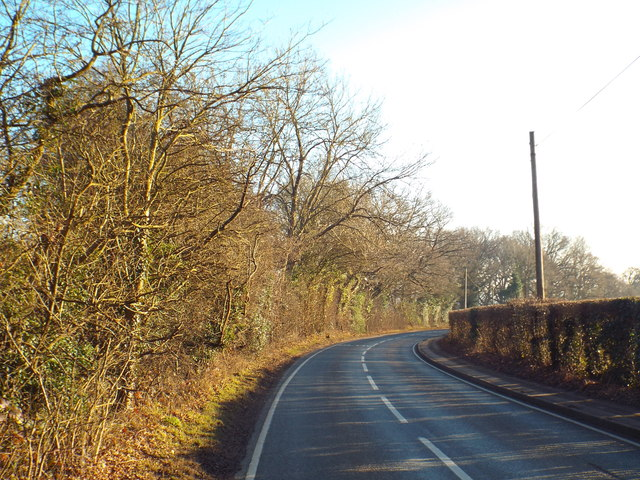 Pollard Wood Road, near Oxted