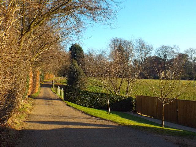 Pains Hill, near Limpsfield