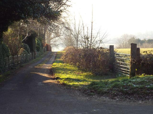 Tenchley's Lane, near Limpsfield