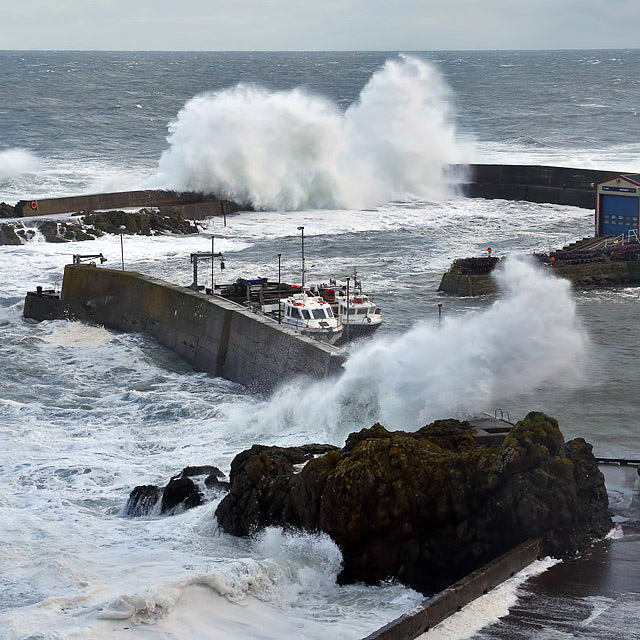 A stormy scene at St Abb's Harbour