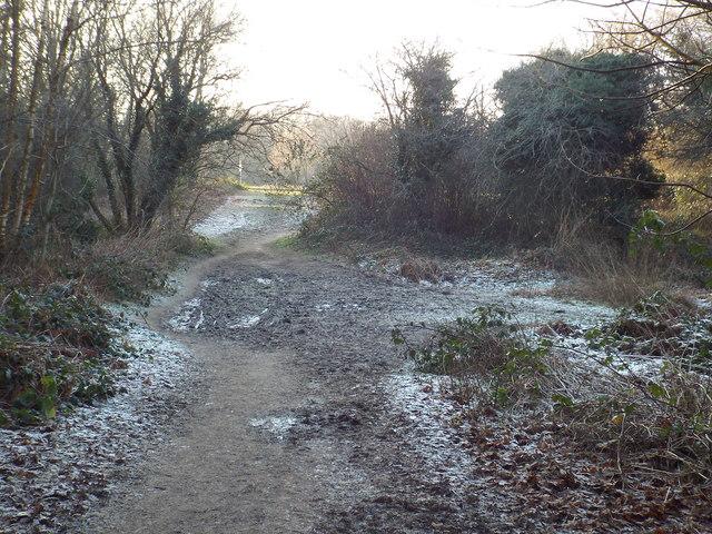 Greensand Way near Limpsfield Chart