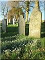 SX0878 : In Michaelstow churchyard by Derek Harper