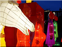 SJ8398 : Lanterns of the Terracotta Army Installation, Year of the Rooster by David Dixon