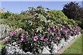 SU5927 : Flowers on the Walk by Bill Nicholls