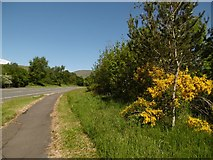 NS3586 : Path beside the A82 by Richard Webb