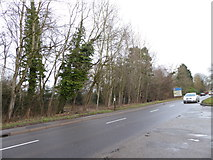SU9946 : Looking from the Parrot Inn car park onto the A248 by Basher Eyre