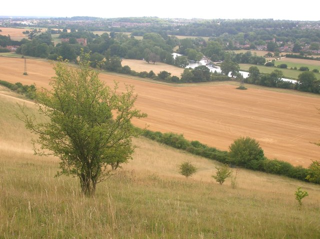 Harvested field at Mapledurham from Westford Hill