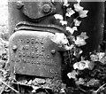 TG2909 : 1920s coke boiler (detail) by Evelyn Simak