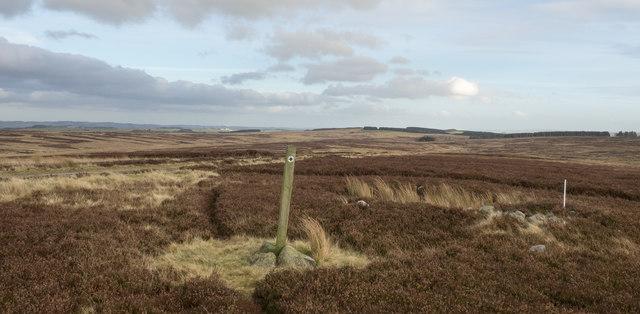 Bridleway marker on moorland