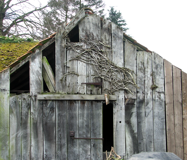 Gable end of an old shed
