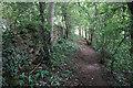 ST7965 : Footpath on Bathford Hill by Bill Boaden
