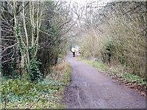TQ1776 : Thames Path [6] by Michael Dibb