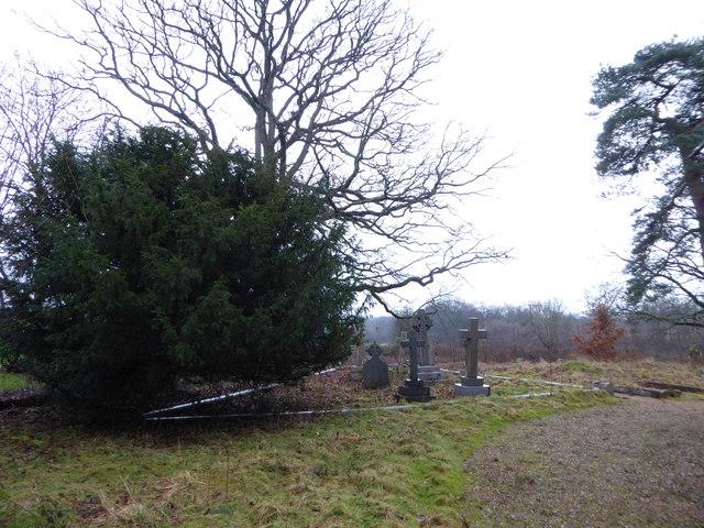 St Andrew, Grafham: churchyard (b)