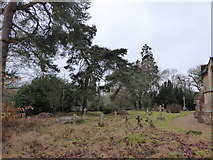 TQ0241 : St Andrew, Grafham: churchyard (f) by Basher Eyre