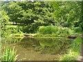 SU7139 : Alton - River Wey by Colin Smith