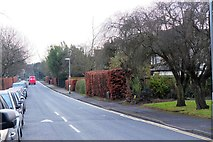 TL4359 : Storey's Way, Cambridge by Jim Barton