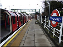 TQ4192 : A Central line train at Roding Valley station by Marathon