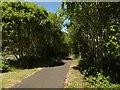 NS3498 : Cycle path, Inverbeg by Richard Webb