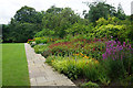 ST7365 : Herbaceous border in Bath Botanical Gardens by Bill Boaden