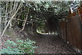 TQ3740 : Tandridge Border Path by N Chadwick