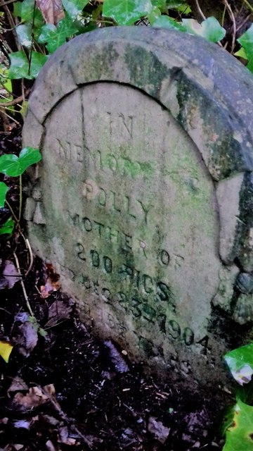 Grave of Polly - Mother of over 200 pigs