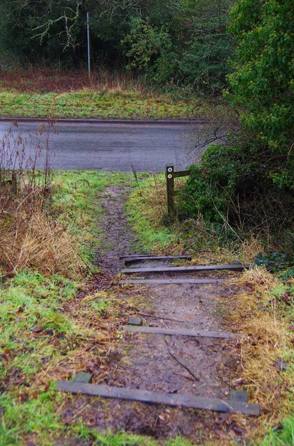 Steps down to Brock Hill Lane, Forhill, Worcs