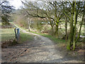 TQ4892 : Path towards Hainault Forest woods by Robin Webster