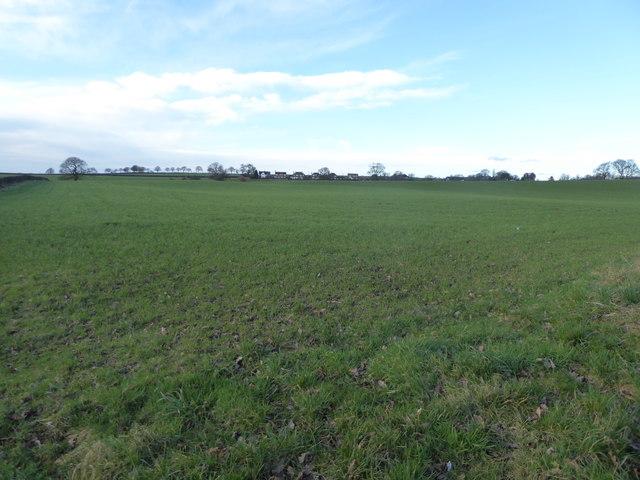 Keele: field off Three Mile Lane