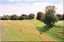 SU1070 : Avebury Circle by Jeff Buck