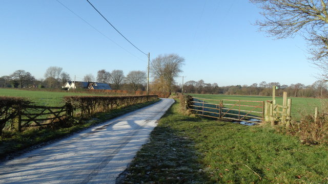 Frosty lane on the southern edge of Chelford Heath