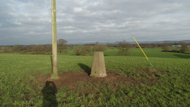 Trig point at Chance Hall, Odd Rode