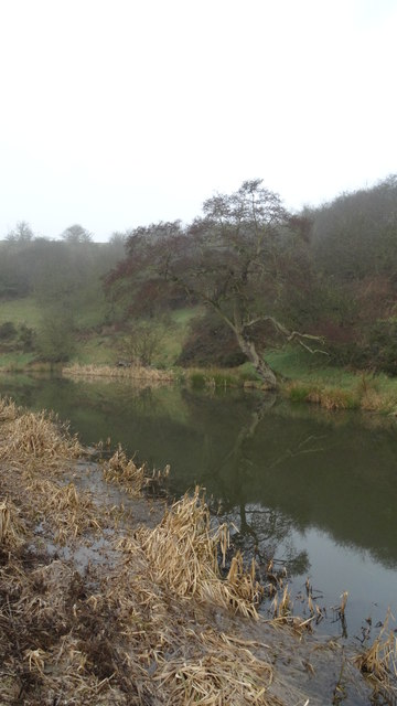 Leek Canal by Hollinhay Wood