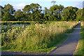 SP2964 : Walking round Kingfisher Pool on a summer's evening, Myton Fields, Warwick by Robin Stott