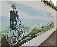 TQ1649 : Dorking - Mural by Colin Smith