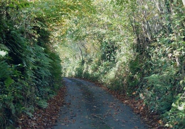 Lane to Goldworthy