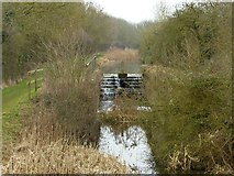 SK8336 : Lock 12, Grantham Canal by Alan Murray-Rust