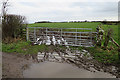 NY3260 : Muddy Ruts by Anne Burgess