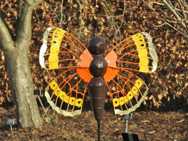 Wisley - Butterfly Model