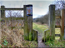 SD7909 : Stile and Path towards Elton Reservoir by David Dixon