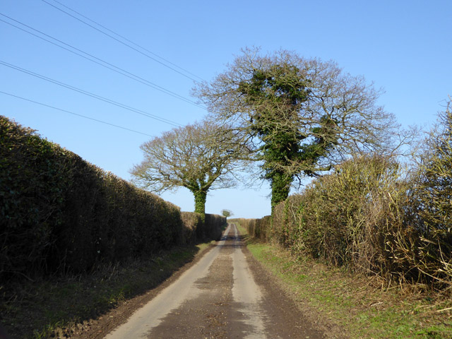 Lane up Newbarn Down