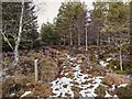 NH6433 : Trail of the 7 Lochs by valenta